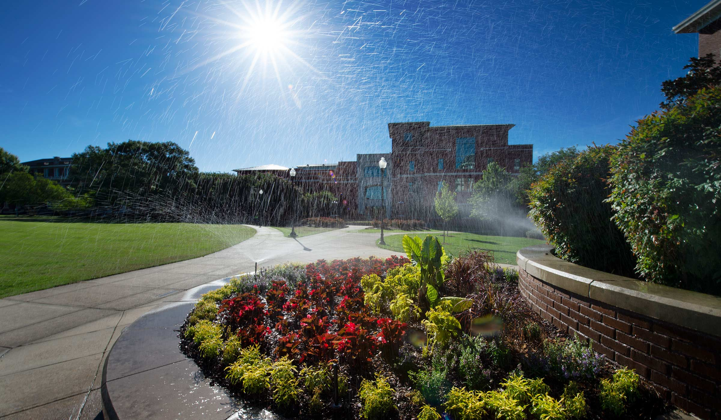 The morning sun catches sprinkler droplets over a flower bed in front of Swalm.