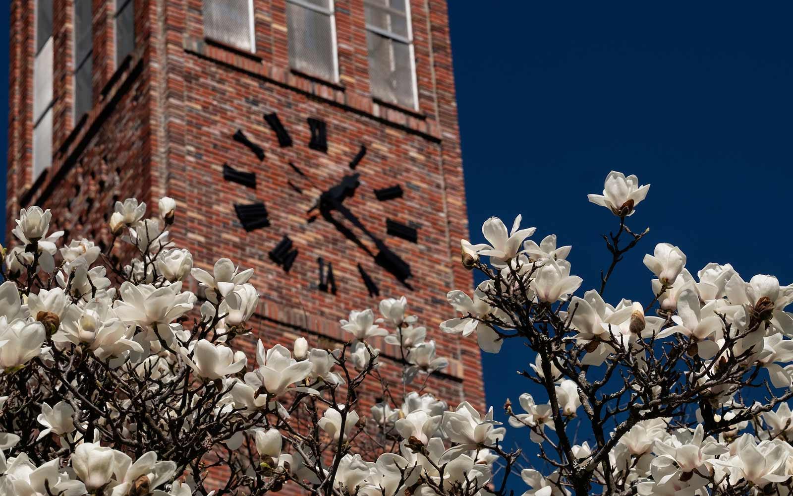 MSU revises Spring 2021 academic calendar amid COVID 19