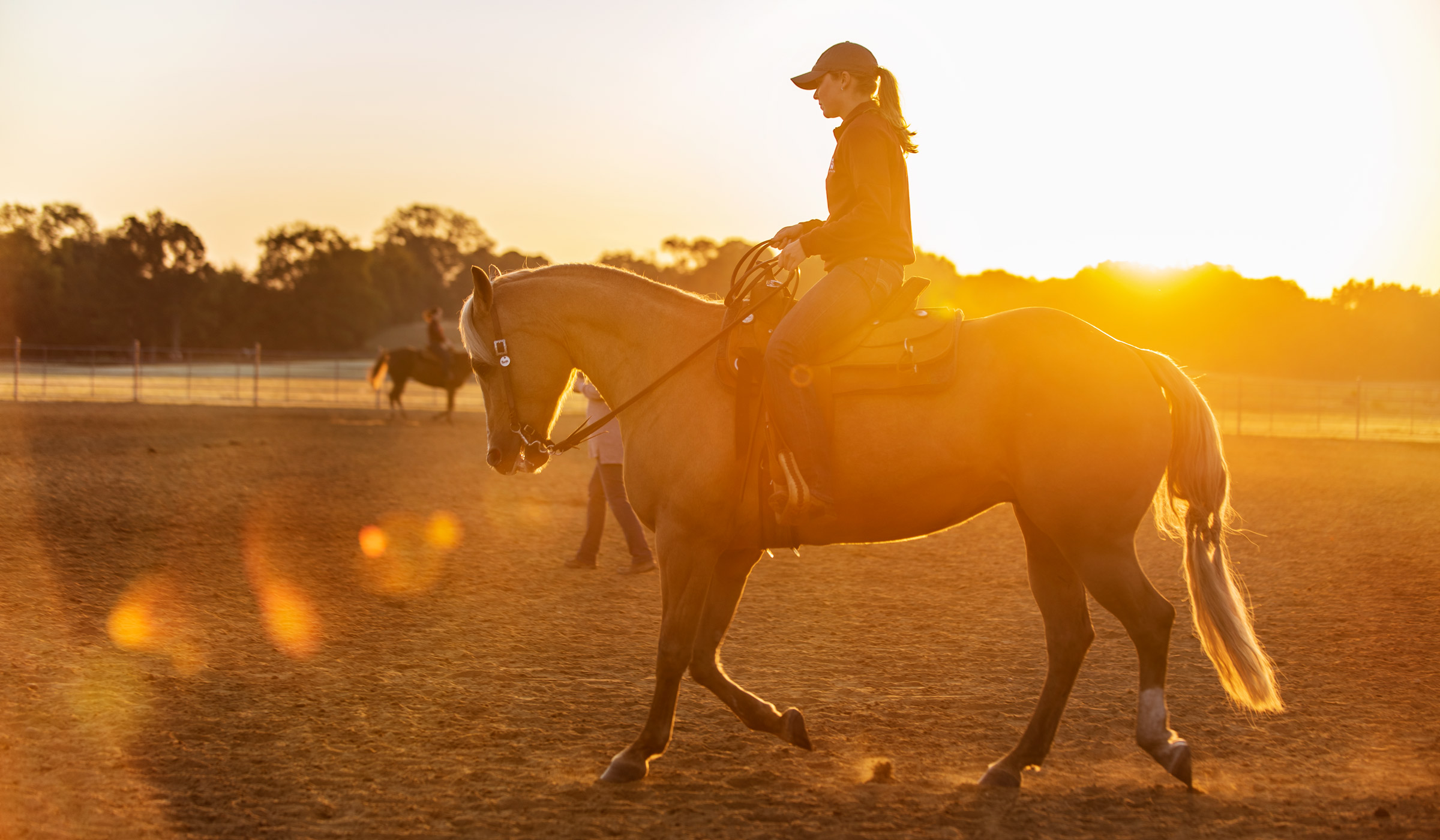 With the morning sunbeams around her, student Equestrian Club member  Jillian Conner rides her horse while kicking up dust.