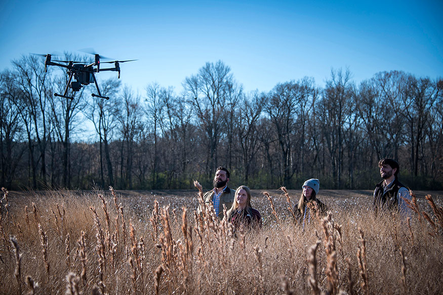 Researchers are pictured in tall grass as a UAV hovers above with the blue sky in the background.