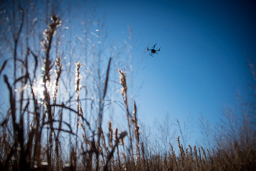 A UAV is pictured above a plot of native grass at the W.B. Andrews Agricultural Systems Research Farm, located east of MSU's Starkville campus.