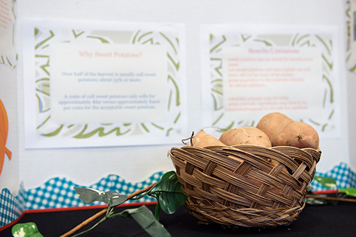 The Sweet Potato Innovation Challenge yielded more than 80 novel ideas for new sweet potato products. (Photo by Megan Bean)