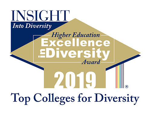 2019 Higher Education Excellence in Diversity Award logo