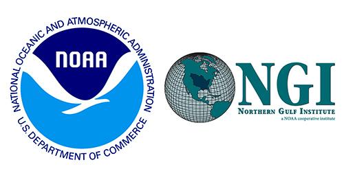 NOAA and NGI logos
